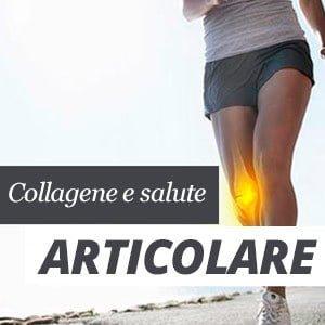 articolazioni collagene