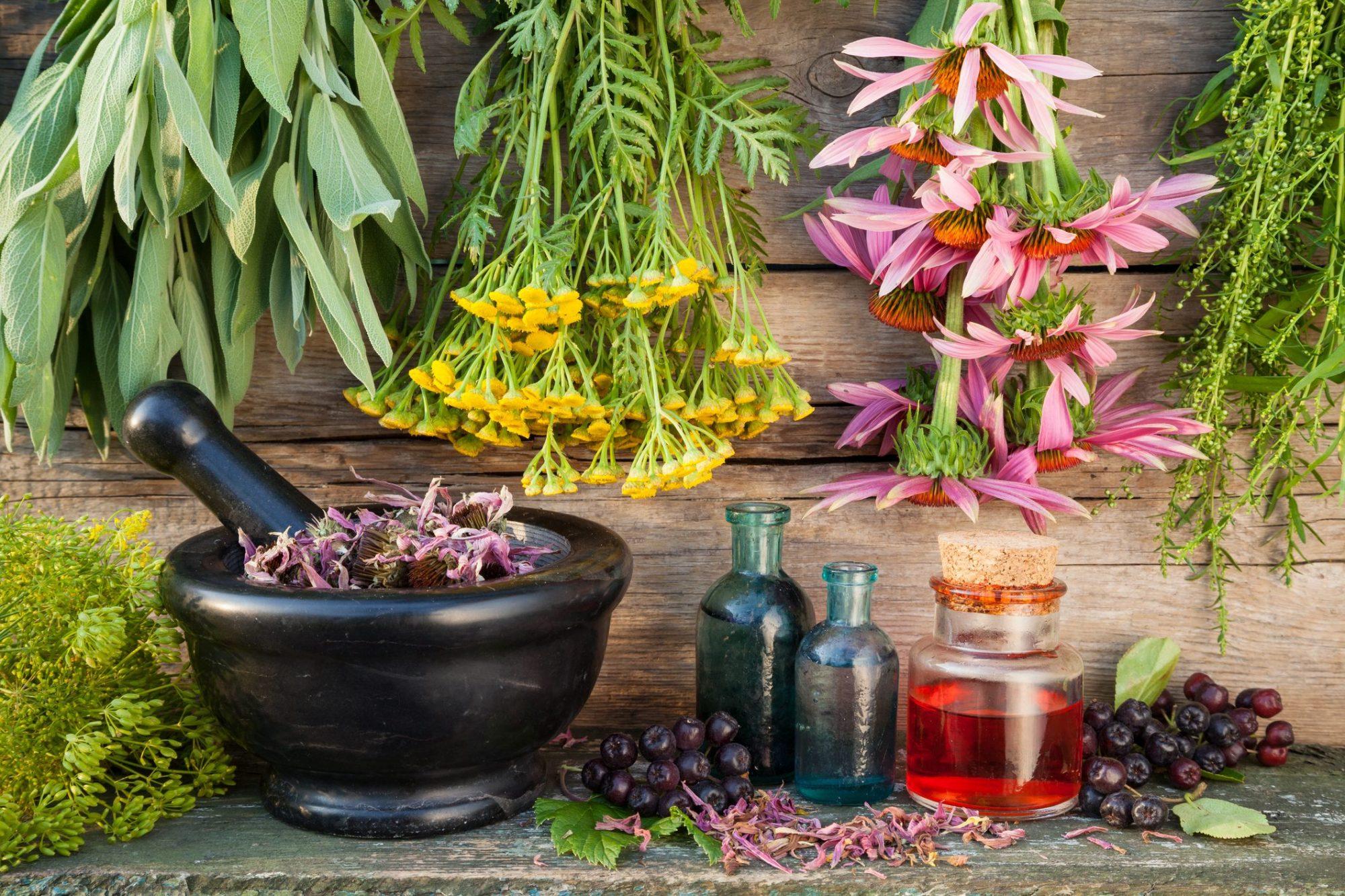 Mortaio e oleoiti e erbe naturali