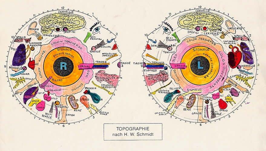Mappa iridologia