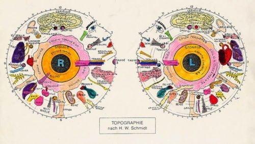 Iridologia e Prevenzione - VENERDI' 13  DICEMBRE 3